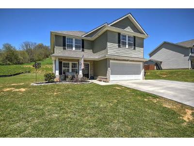Kingsport Single Family Home For Sale: 2744 Rock Springs Road