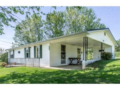 Greeneville Single Family Home For Sale: 910 Lick Hollow Road