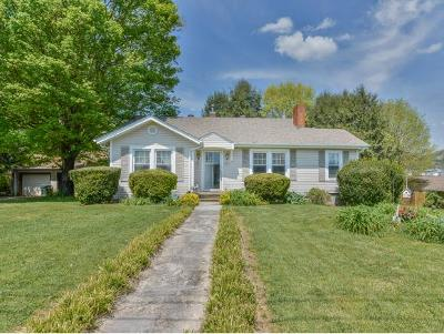 Bristol VA Single Family Home For Sale: $110,000