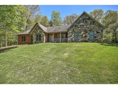 Blountville Single Family Home For Sale: 1580 Harr Town Rd