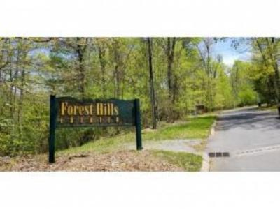 Unicoi Residential Lots & Land For Sale: TR 21 Mountain Laurel Court
