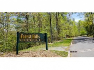 Unicoi Residential Lots & Land For Sale: TR 32 Mountain Laurel Court