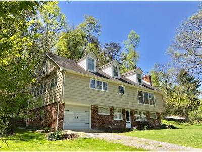 Bristol Single Family Home For Sale: 383 Tva Road South