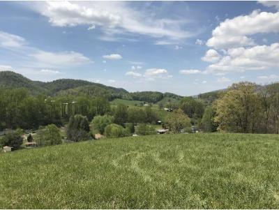 Residential Lots & Land For Sale: T.B.D. Nave Hollow Road