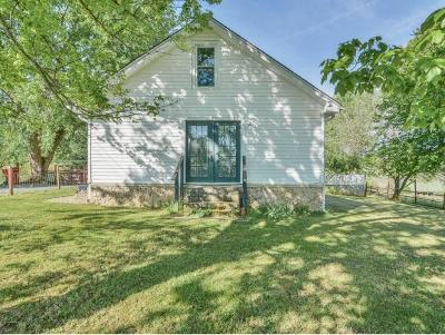 Johnson City Single Family Home For Sale: 129 Hughes St