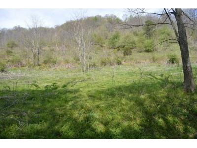 Residential Lots & Land For Sale: TBD Sugar Hollow Road