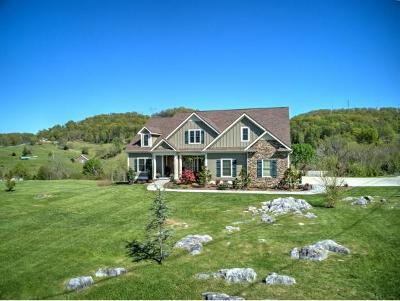 Gray Single Family Home For Sale: 452 Buckingham Road