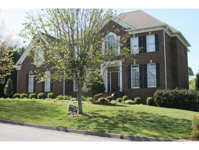 Kingsport Single Family Home For Sale: 2541 Rivermont Circle