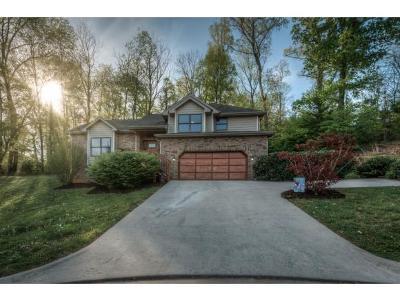 Johnson City Single Family Home For Sale: 1214 Lake Ridge Square