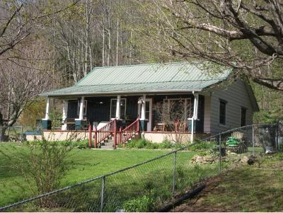 Roan Mountain Single Family Home For Sale: 753 Shell Creek Rd