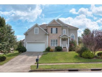 Johnson City Single Family Home For Sale: 209 Lee Carter Drive
