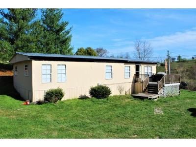 Single Family Home For Sale: 134 Virgil