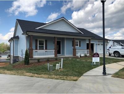 Johnson City Single Family Home For Sale: 201 Princeton Gardens Dr