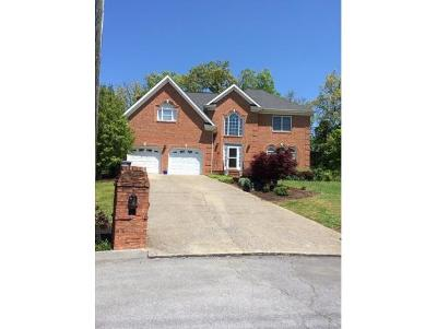 Kingsport Single Family Home For Sale: 1009 Bard Ln
