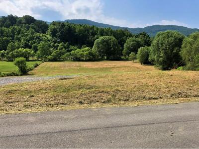 Greene County Residential Lots & Land For Sale: 2305 Little Meadow Creek Rd
