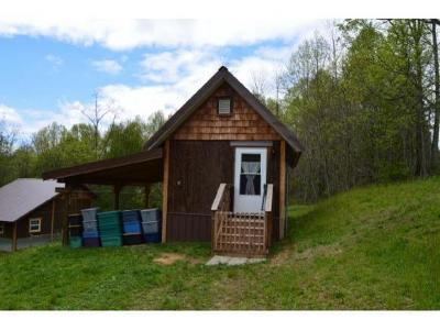 Roan Mountain Single Family Home For Sale: 536 Old Buck Mountain Road