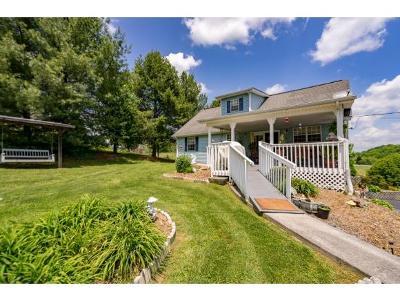 Jonesborough Single Family Home For Sale: 310 Jim Ford