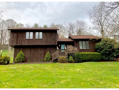 Kingsport Single Family Home For Sale: 1049 Woodstone Drive