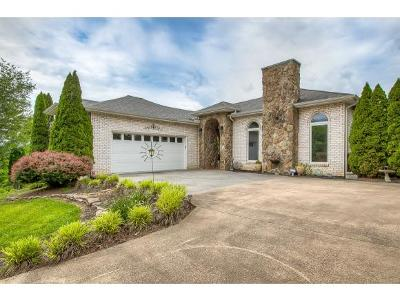 Kingsport Single Family Home For Sale: 125 Timbertree Branch Rd