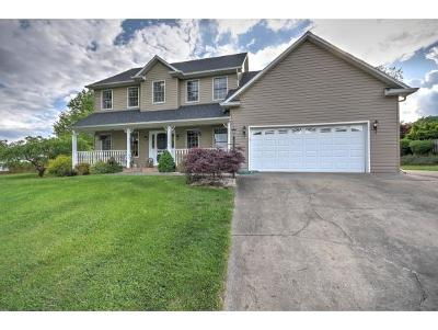 Kingsport Single Family Home For Sale: 4117 Grey Fox Drive