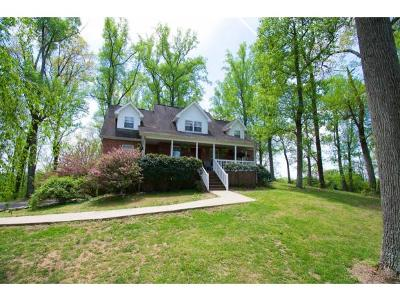 Blountville Single Family Home For Sale: 432 Buttermilk Rd E