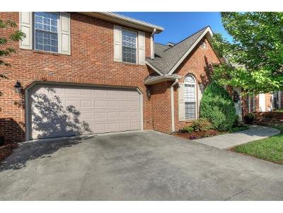 Johnson City Condo/Townhouse For Sale: 404 E Mountain View Rd #403