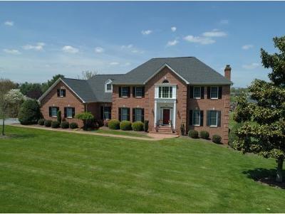Abingdon Single Family Home For Sale: 395 Winterham Drive