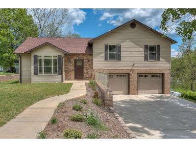 Elizabethton Single Family Home For Sale: 544 Division Street