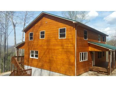 Roan Mountain TN Single Family Home For Sale: $299,500
