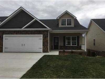Gray Single Family Home For Sale: 284 Piper Glen