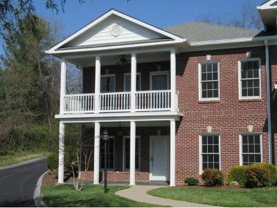 Johnson City Condo/Townhouse For Sale: 946 Morningside Dr #946