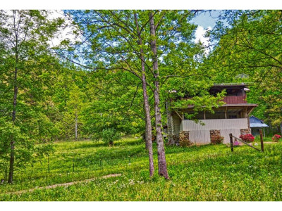 Greeneville Single Family Home For Sale: 7254 Houston Valley Road