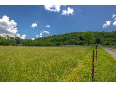 Johnson City Residential Lots & Land For Sale: 2020 Carroll Creek Rd