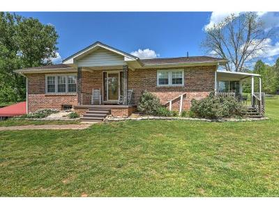 Bristol Single Family Home For Sale: 887 Bullock Hollow Rd