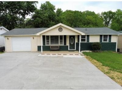 Kingsport Single Family Home For Sale: 2828 Carrollwood Heights Road