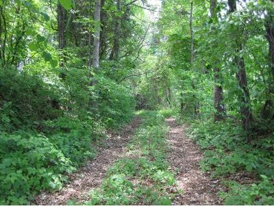 Washington-Tn County Residential Lots & Land For Sale: tbd Highway 11 E