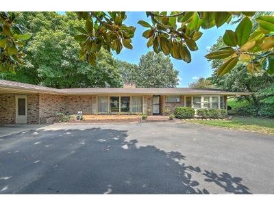 Kingsport Single Family Home For Sale: 2136 Heatherly Rd.
