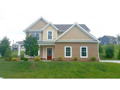 Kingsport Single Family Home For Sale: 2903 Royal Mile Divide