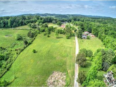 Greene County Residential Lots & Land For Sale: 240 Knight Hollow Lane