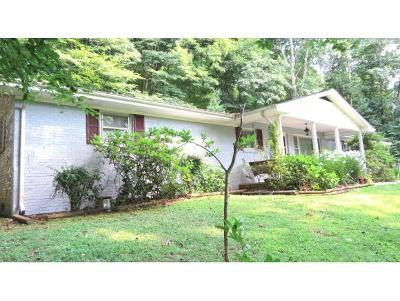 Bristol VA Single Family Home For Sale: $195,000