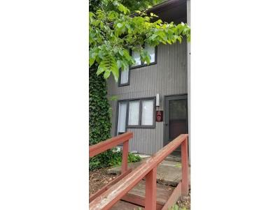 Johnson City Condo/Townhouse For Sale: 115 Beechnut Street #A-9