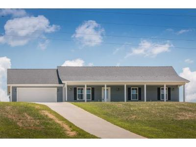 Abingdon Single Family Home For Sale: 17581 Bridle Drive