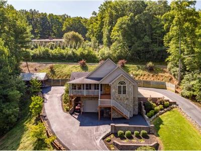 Erwin Single Family Home For Sale: 347 Fishery Loop Rd