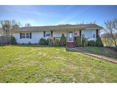 Gray Single Family Home For Sale: 1015 Gray Station Road