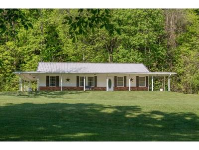 Bluff City Single Family Home For Sale: 448 Flatwoods Rd.