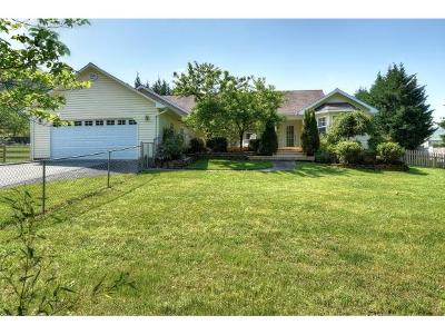 Johnson City Single Family Home For Sale: 639 Toll Branch Road