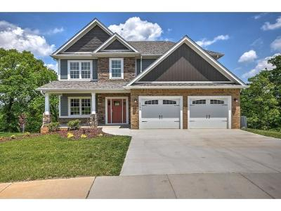 Kingsport Single Family Home For Sale: 3121 London Road