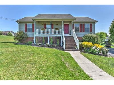 Jonesborough Single Family Home For Sale: 17 Audrey Lane