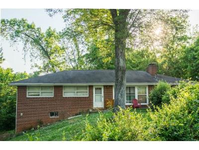 Kingsport Single Family Home For Sale: 1474 Highpoint Ave