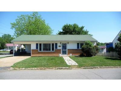 Greeneville Single Family Home For Sale: 201 Lake St.